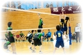 2013.03.03_volleyball_men.jpg