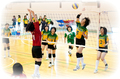 2013.03.03_volleyball_women.jpg